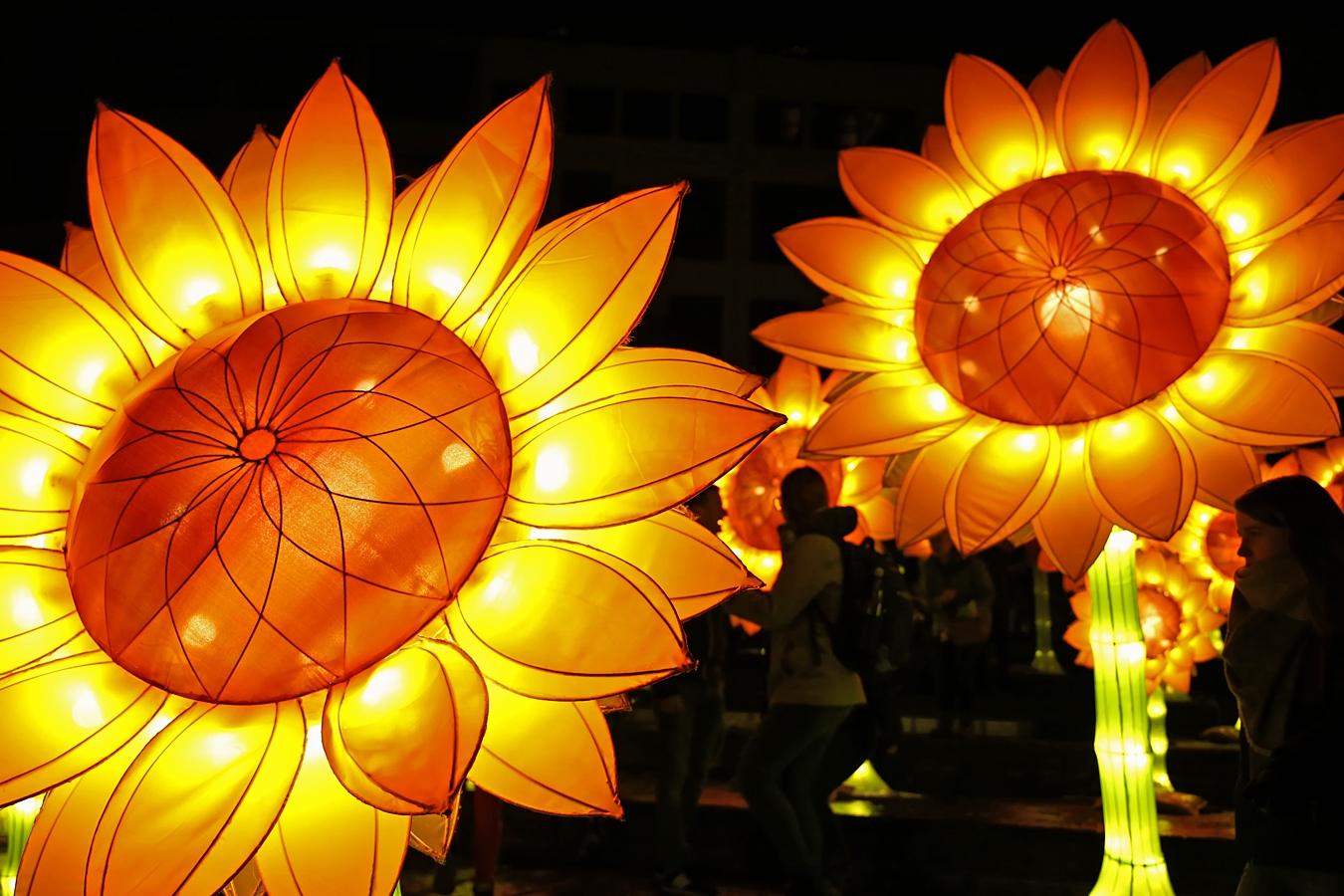 Lichtplein - Zonnebloemen voor van Gogh