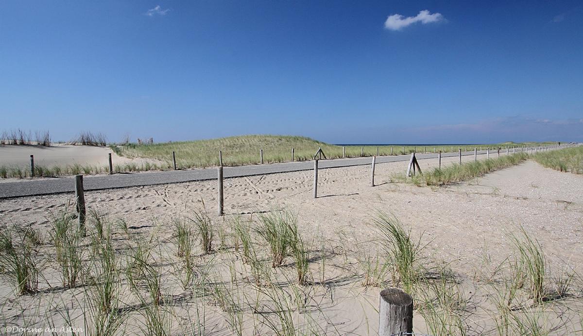 Strand Hondsbosschezeewering