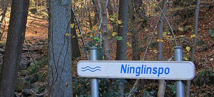 Ninglinspo 2015